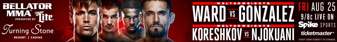 bellator 182 mma fight fighter poster banner